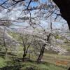 4月19日(土)塩川御殿場公園へ