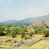 メキシコ一人旅③ ティオティワカン遺跡でピラミッドを見てきたら丸焦げになりました。