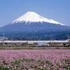 登山素人の富士登山