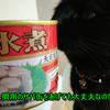 猫に人間用のサバ缶をあげても大丈夫なの?