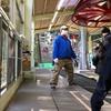 高尾山にデカチワワのマロンと紅葉狩りでリフトに乗る!