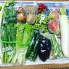 【ふるさと納税】岩手県北上市のたっぷり野菜セット(8月)