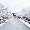 智積院の雪のトンネルと白銀の境内。