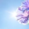 1-10.【時よ止まれ!美の秘訣】老化の原因はたった2つ?!今日から簡単にできるアンチエイジングの習慣(酸化編:活性酸素の生成要因と影響)[第8回]