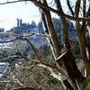 白いロックガーデン(奥多摩・大岳山)