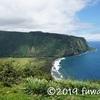ハワイ島は好みが分かれる…かもしれない