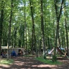 山梨県 キャンプ場「lake lodge yamanaka レイクロッジヤマナカ」のおすすめポイントはこれだ!このキャンプ場スゴイです!