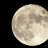 今夜は満月、満月の不思議な効果!犯罪率もアップ?