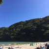 2016年夏に訪れた海水浴場の備忘録(18切符の日帰り旅と伊豆半島ドライブ1泊旅)