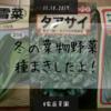 【家庭菜園】葉物野菜で鍋したい!冬の葉物野菜3種類の種まきしたよ!