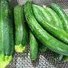 義母が作る野菜がとても美味しい!味付けはシンプルに。