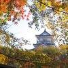 浜松の紅葉