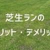 芝生で走る!メリットとデメリットを紹介します
