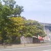 大阪万博記念公園の日本庭園へ20190531