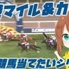 2019香港マイル、香港カップを当てたい【通常は新馬戦ブログ】