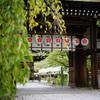 平野神社で彼岸花