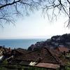 【北マケドニア旅行記】4:オフリド湖畔の教会めぐり。そしてバスに乗り損ねる。
