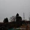 秦野 転 天気  最高気温7度 雨のち曇り