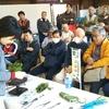 第40回秋葉路小品盆栽連合展の報告