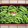 赤いそら豆(はつ姫)の収穫&そら豆ご飯