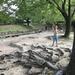 名東区長久手の無料で遊べる子供水遊び公園 杁ヶ池公園
