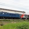 第542列車 「 甲43 JR貨物 DF200-222号機の甲種輸送を狙う 」