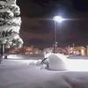 ゆ、ゆ、ゆ、雪~!!