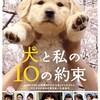 DVD/犬と私の10の約束
