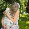 犬は外で育てる生き物?「番犬」から「癒し」の存在になった犬の飼い方