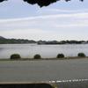 長沢池と水没鳥居