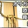 【#StayHome】おりがみでブラキオサウルスの全身骨格を織りなす