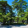 2018伊勢志摩旅行-2 快晴の伊勢神宮撮影。360°全天球撮影も。 #THETA360