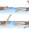 【水泳学習】きみは、背泳ぎができる!