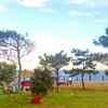 グランピングを楽しめる福井県のオシャレでおすすめの場所は?