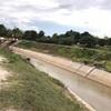 アンコールワット個人ツアー(105)カンボジアでバッタンバン農業政策 バッタンバン農業観光ツアー