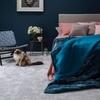 寝室・快適な睡眠環境を整えるために・カーペット