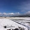 故郷は雪景色の中
