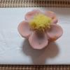 かわいい和菓子(季節の生和菓子ねりきり) 「桃花」:菊家(東京南青山)
