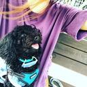 犬と二人暮らし 〜 札幌から浜松に移住した黒いのと紫なの