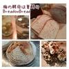 夏ならではの自然酵母のパンの焼き方(7月クラス日程変更しました)について