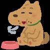 犬の手作りご飯の簡単な始め方