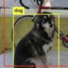 人工知能「Darknet」で画像内の物体識別を試す → 成功