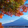秋色の河口湖