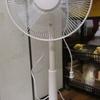 扇風機もドーナツもシンプルなものがいい