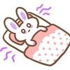 【キャンプ】寝るときのマットは何を使ってますか?不眠症気味の私にやさしいかった意外なものとは!?ちなみに人気のコットじゃないよ。