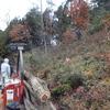 炭焼き用木の搬出