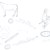 JAN.6,2020_棒馬について / 抽象化のふたつのモデル
