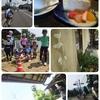 サイクリングのご報告5月