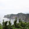 勝浦湾を抱く八幡岬