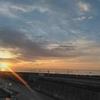 西日本・九州の旅 14日目(最終日)愛知県~静岡県・神奈川・東京・千葉 351km